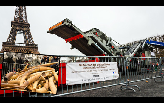 Rockster's R1100DE destroyed 3 tons of ivory in Paris